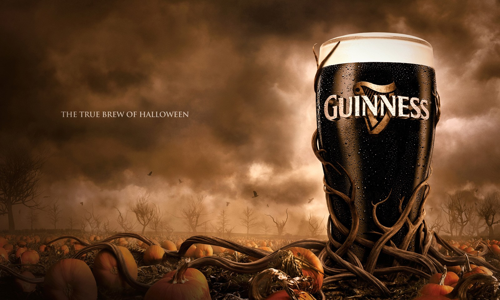 Halloween Guinness Bee...