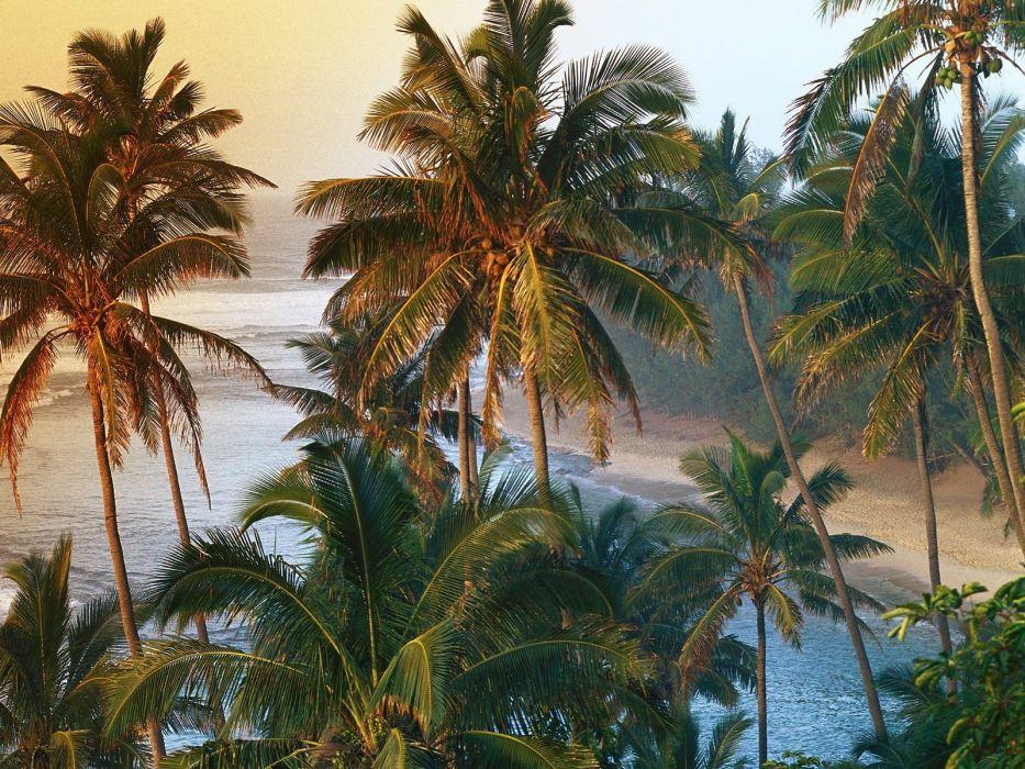 coast Hawaii kauai wallpaper
