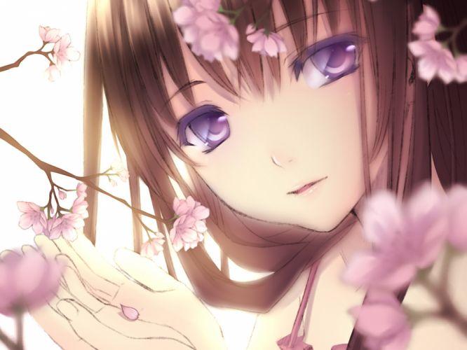 brown hair cherry blossoms close long hair original petals purple eyes wallpaper