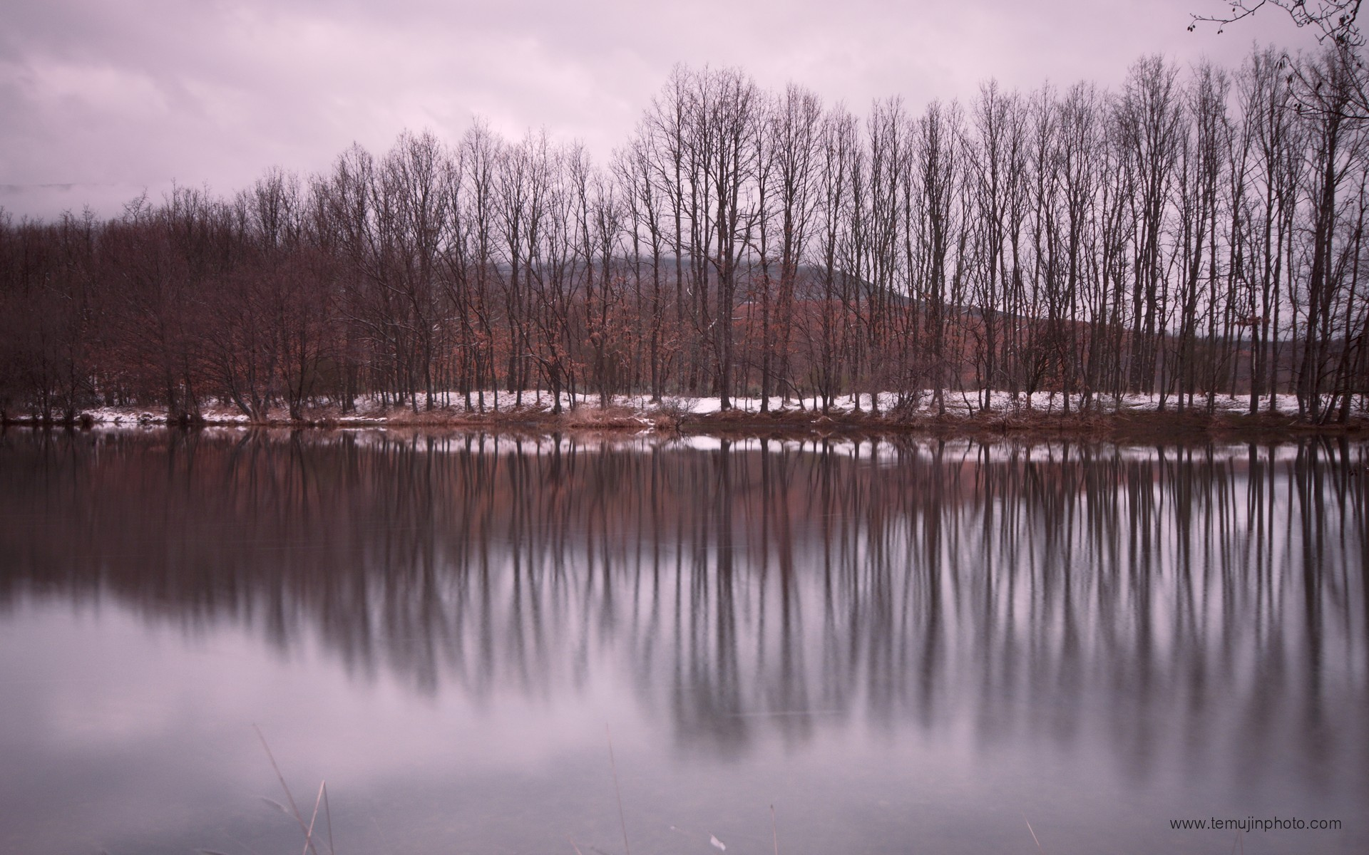 Landscapes nature winter trees lakes vertical reflections - Nature wallpaper vertical ...