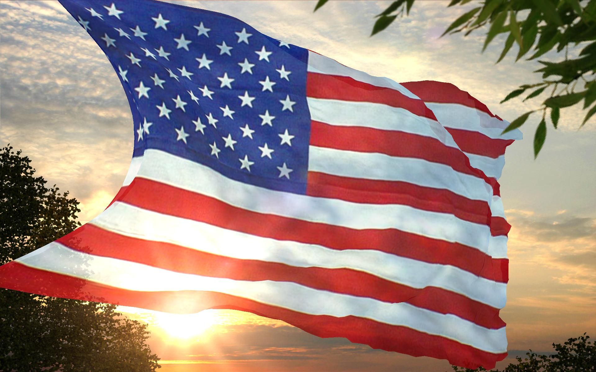 Flags Usa American Flag