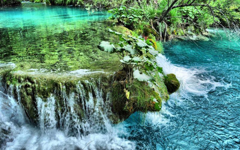 river waterfall plants nature wallpaper