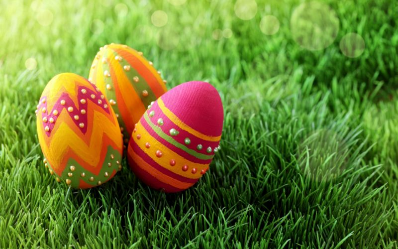 holiday eggs Easter painted grass spring wallpaper