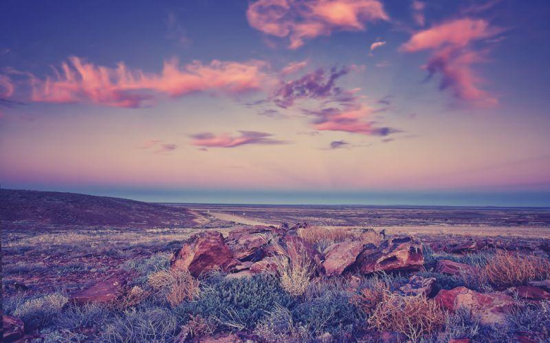 Landscape Purple wallpaper