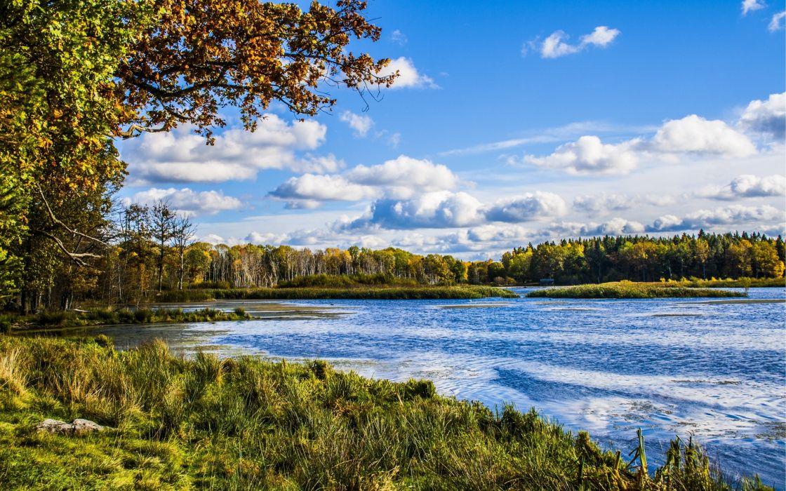 river forest trees nature landscape hdr autumn wallpaper