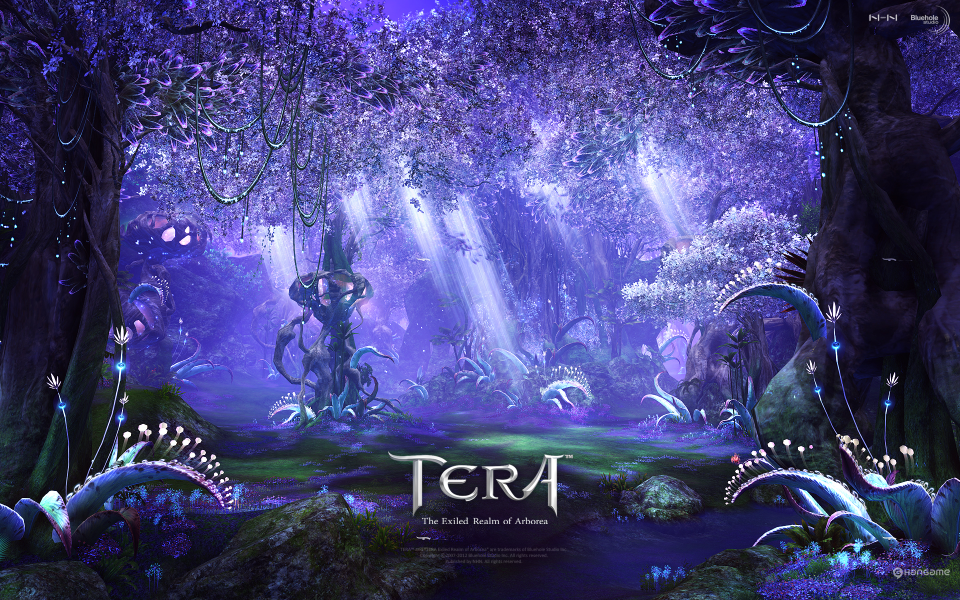 tera online fantasy anime v wallpaper 1920x1200 67846
