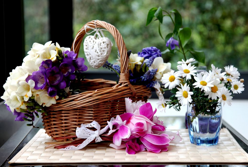 Camomiles Cyclamen Hyacinths Wicker basket Flowers wallpaper