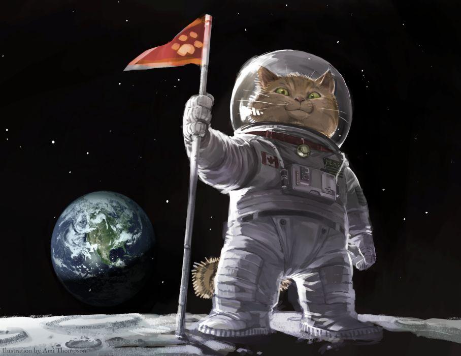 Ami Thompson Original Cat Space Planets Humor Wallpaper