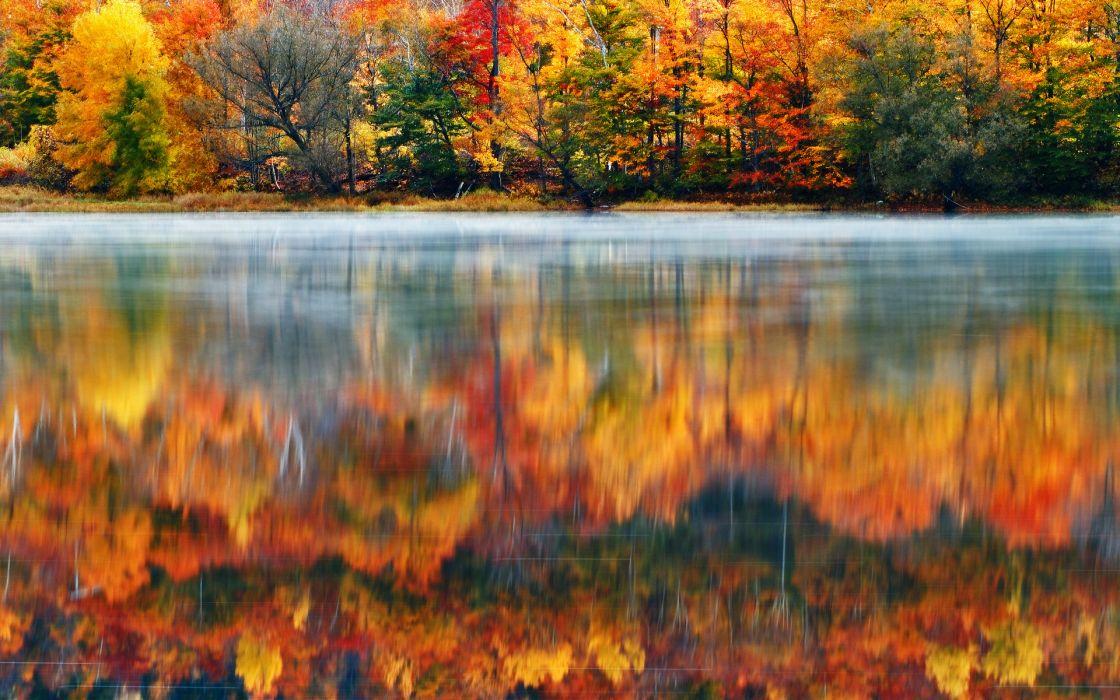 69034 Morning 1920x1200 New Reflection Nature Usa Fog Wallpaperup Lake Hampshire Autumn Wallpaper