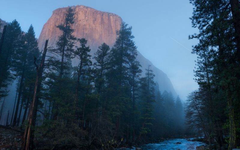 Yosemite Fog Mist Trees Mountain Forest River e wallpaper