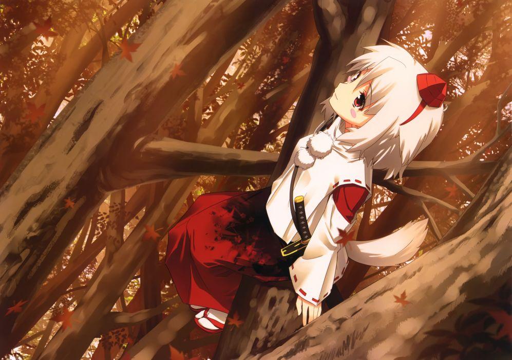 animal ears blush dress hat himorogi japanese clothes red eyes short hair sword tail touhou tree weapon white hair wolfgirl yasuyuki wallpaper