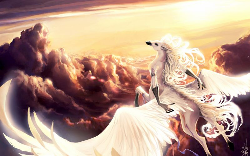 art fantasy pegasus horse wings hands in the sky flying clouds belts sun wallpaper