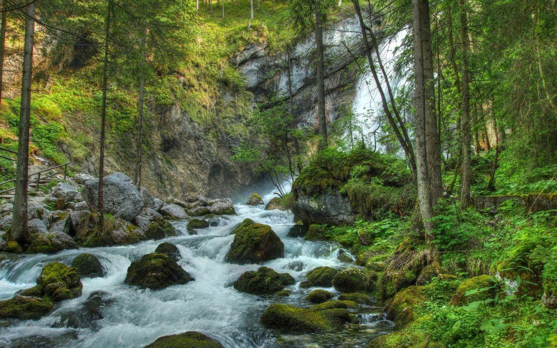 forest waterfall river rocks landscape wallpaper