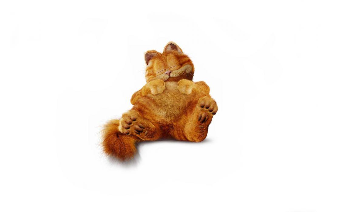 Garfield  furry  cat  minimalist wallpaper