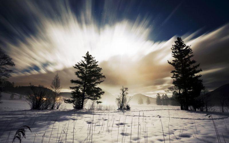 Sunlight Trees Snow Winter Clouds Timelapse wallpaper