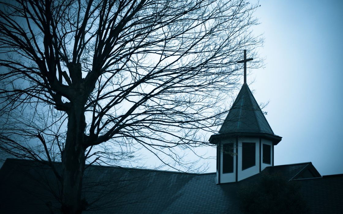 Tree Church Cathedral Steeple wallpaper