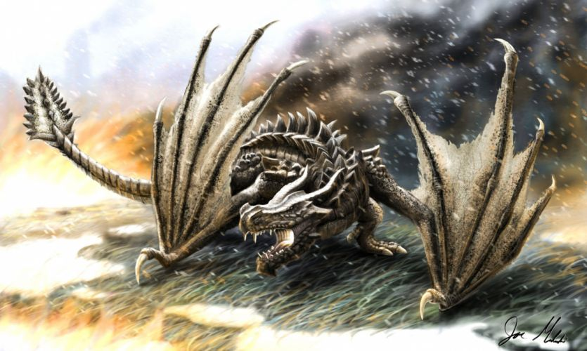 Dragon e wallpaper
