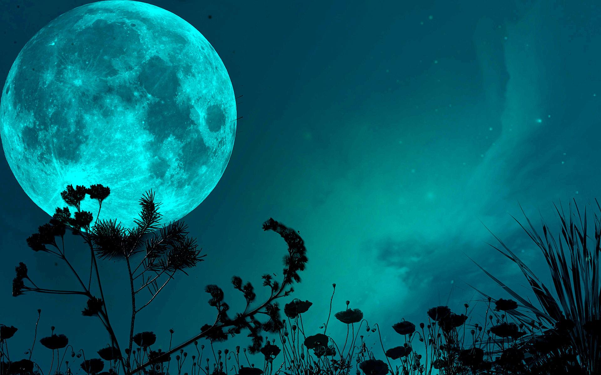 night sky moon shadows grass blade stars wallpaper