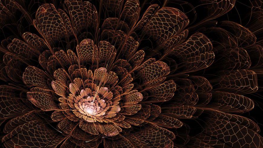 petals art flower abstract wallpaper
