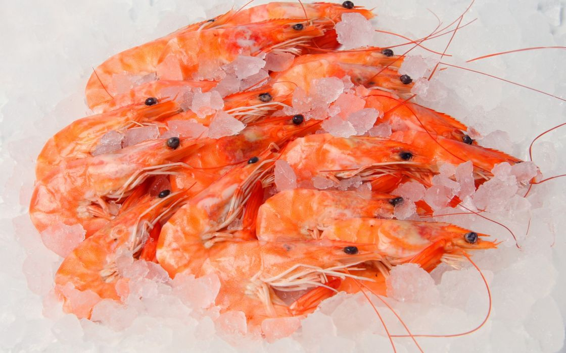 shrimp seafood ice wallpaper
