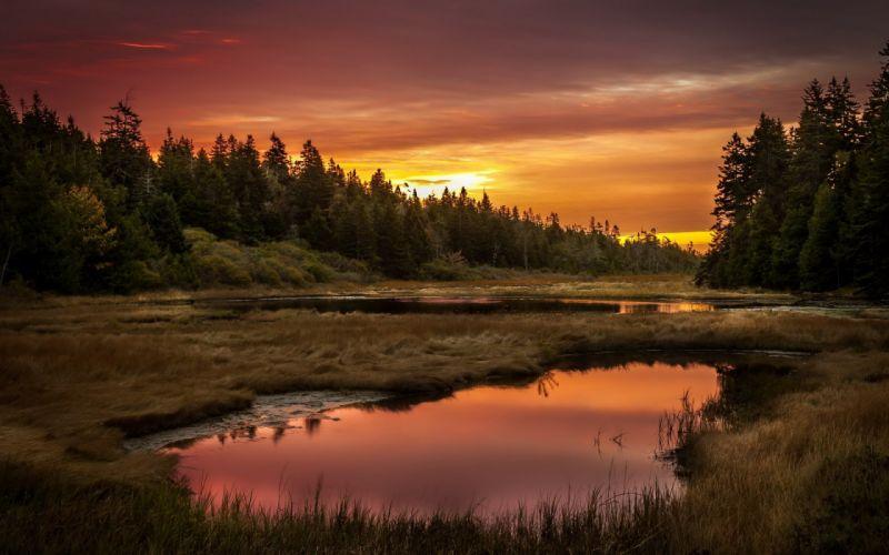 Sunset lake forest landscape reflection wallpaper ...