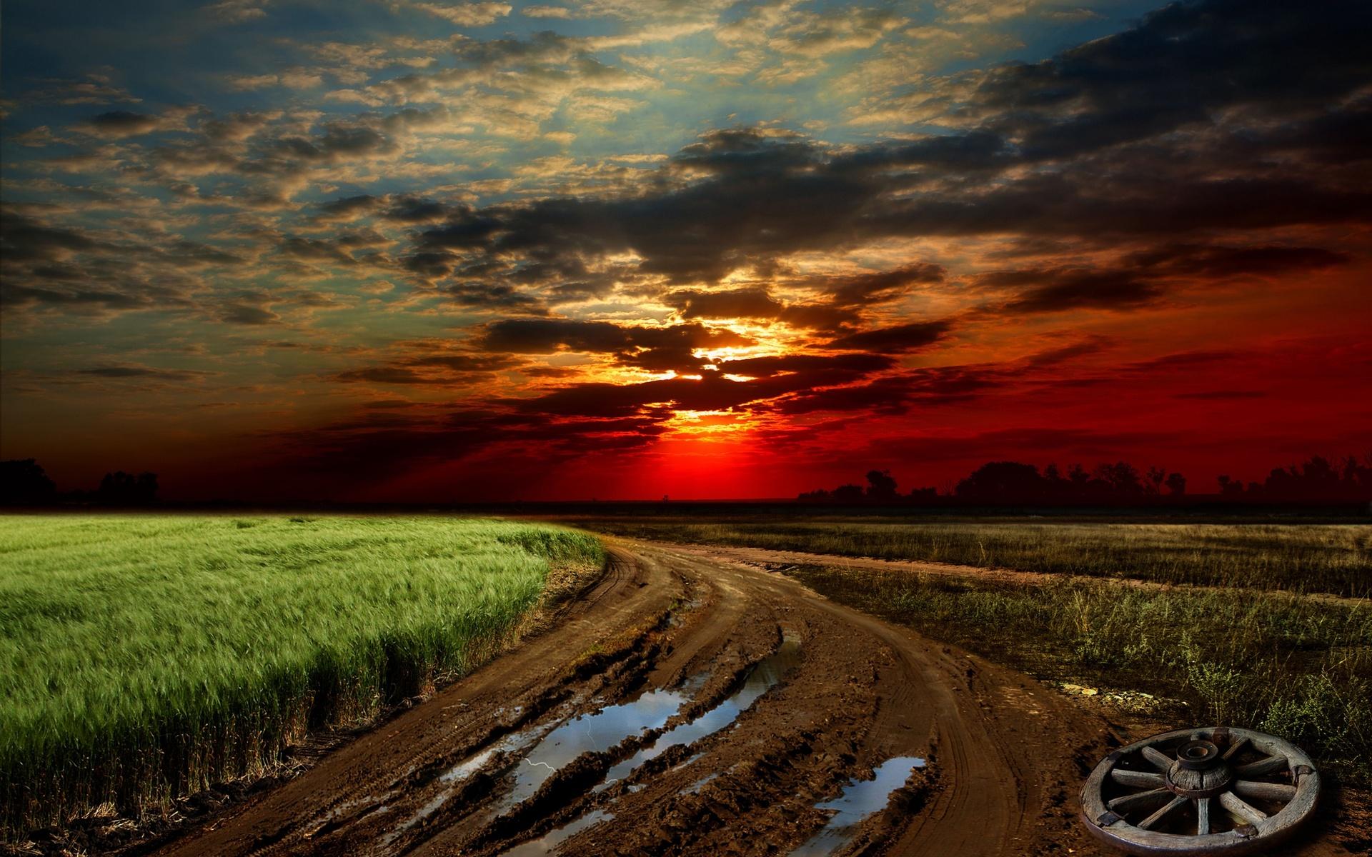 Sunset Road Field Wheel Landscape Wallpaper