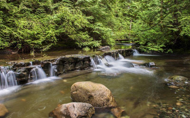 waterfall woods rocks trees landscape wallpaper
