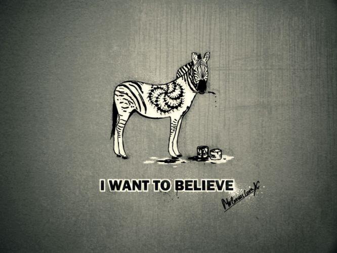 humor zebra animals text wallpaper