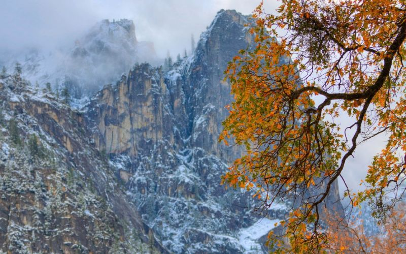 tree mountains autumn nature clouds leaves wallpaper