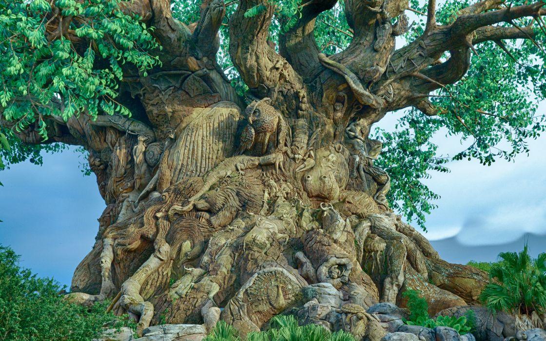 tree branch carved figure animal owls birds landscapes wallpaper