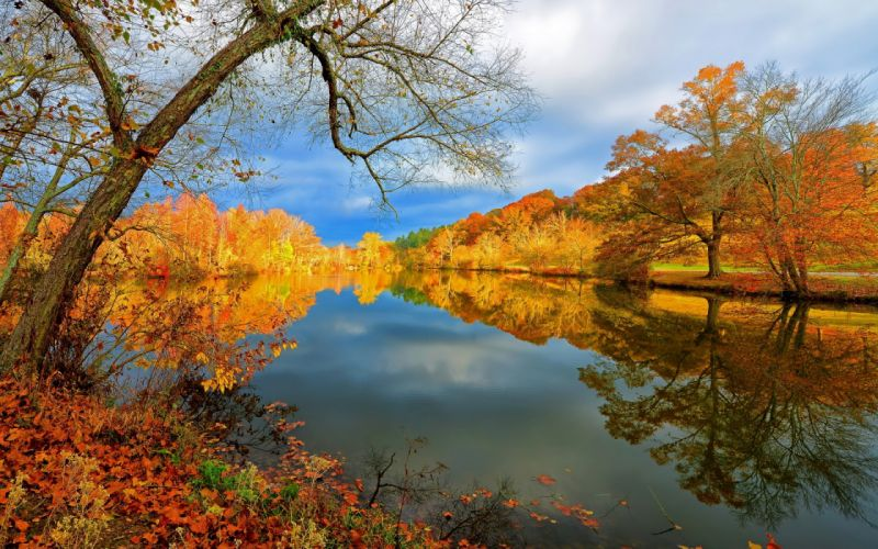 Lake autumn nature landscape reflection trees sky wallpaper
