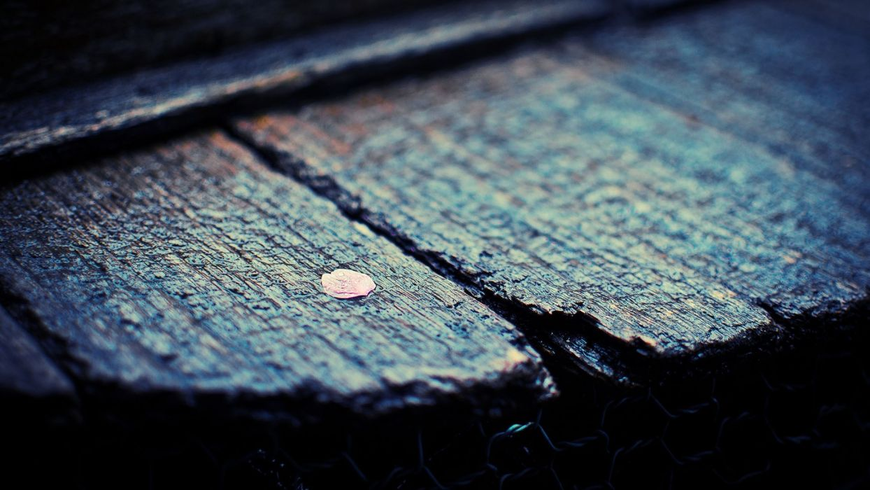 mood wet rain wood texture wallpaper