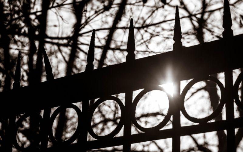 Sunlight Fence BW wallpaper