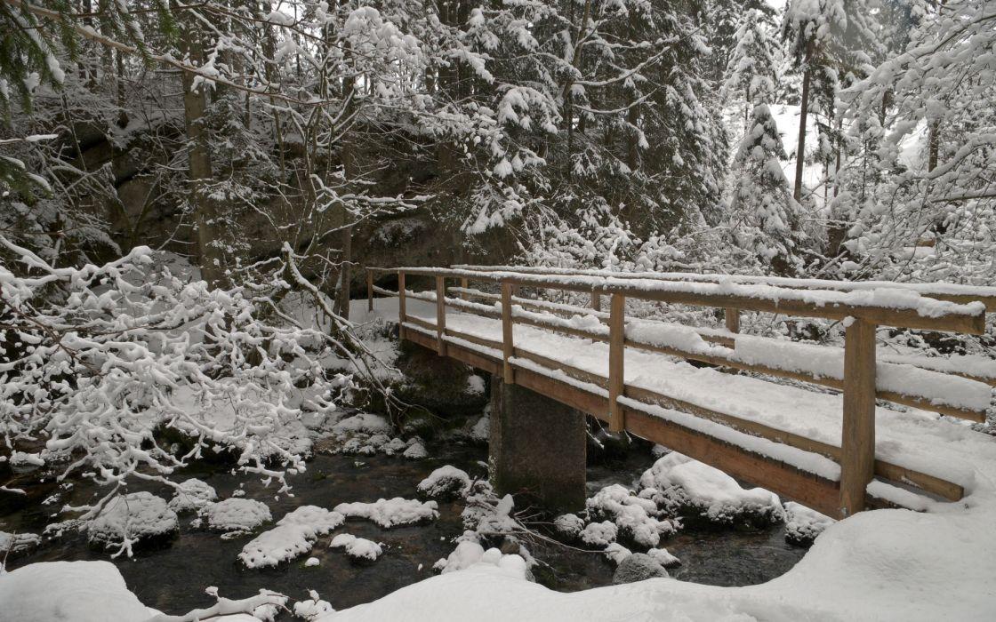 winter river bridge trees landscape wallpaper