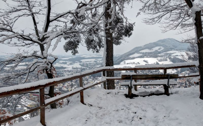 winter snow trees view from the top bench landscape wallpaper