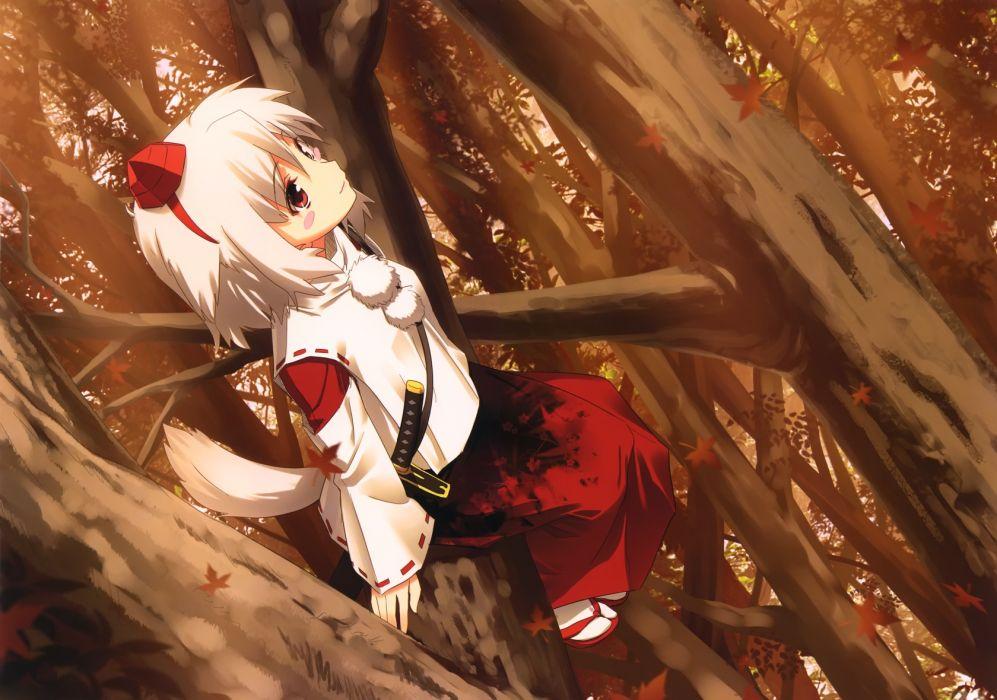 animal ears blush forest hat inubashiri momiji japanese clothes katana miko red eyes scenic socks sword tail touhou tree weapon white hair wolfgirl wallpaper