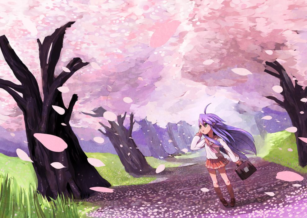 azuse neko blue hair cherry blossoms grass izumi konata lucky star petals seifuku spring tree wallpaper