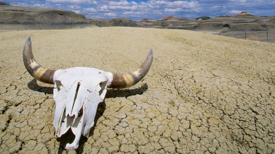 Heat TOFIX summer California Death Valley National Park wallpaper