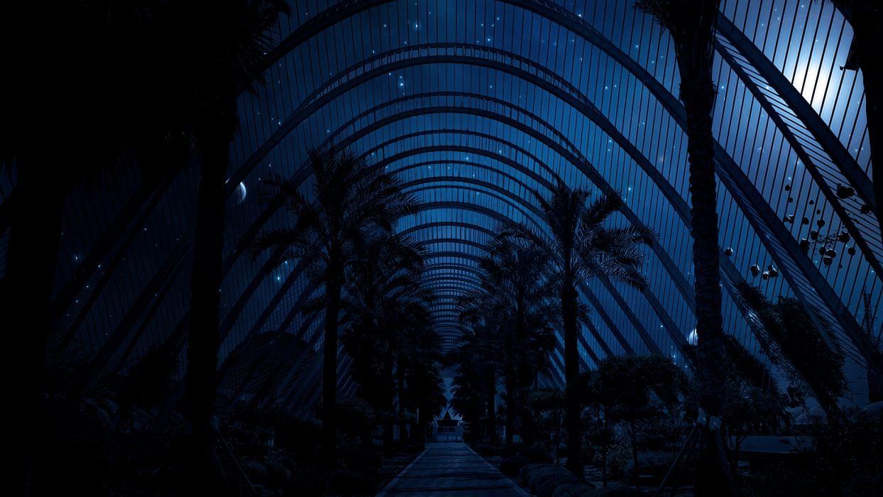 night plants artwork skies biosphere wallpaper