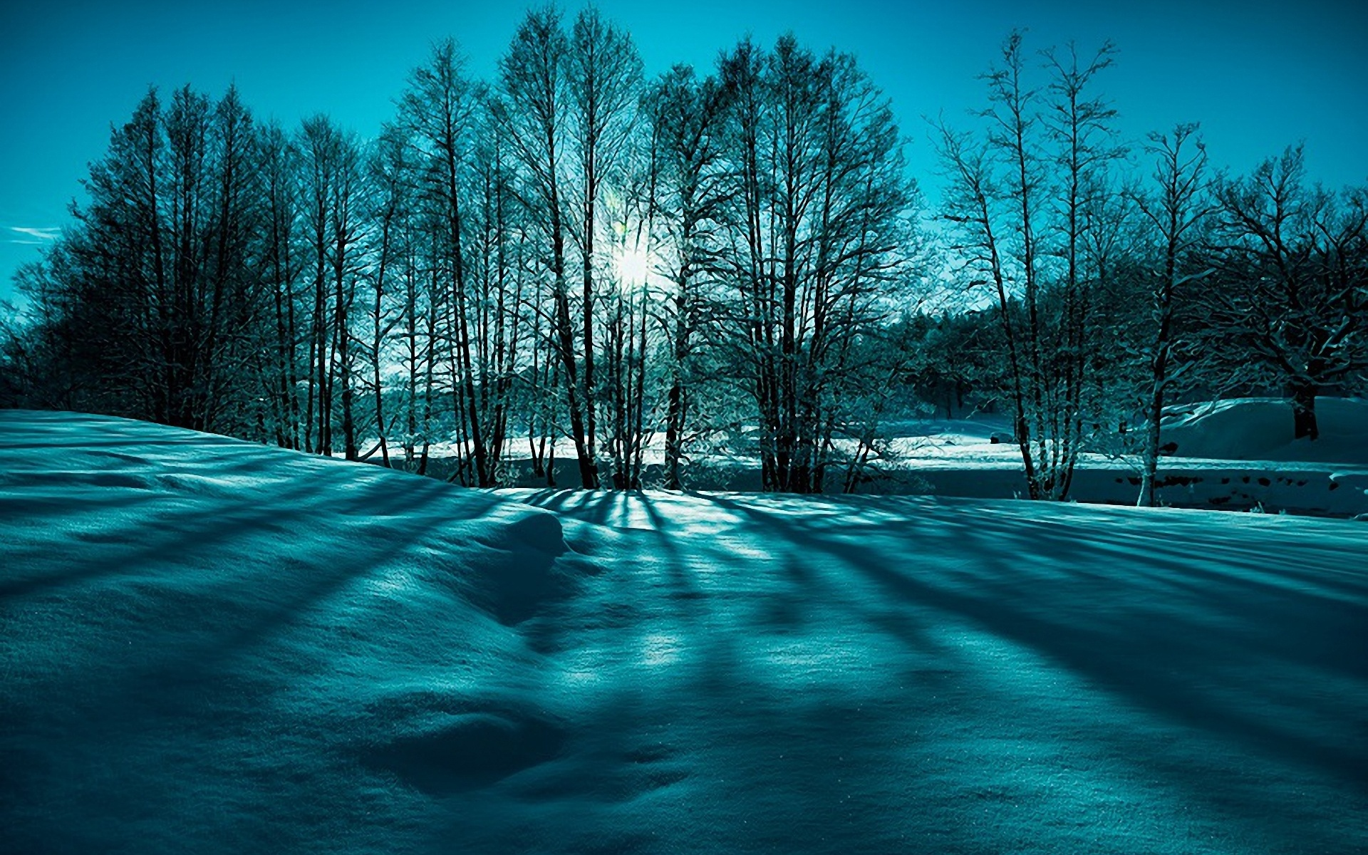 Landscape Snow Trees Winter Nature Beauty Wallpaper