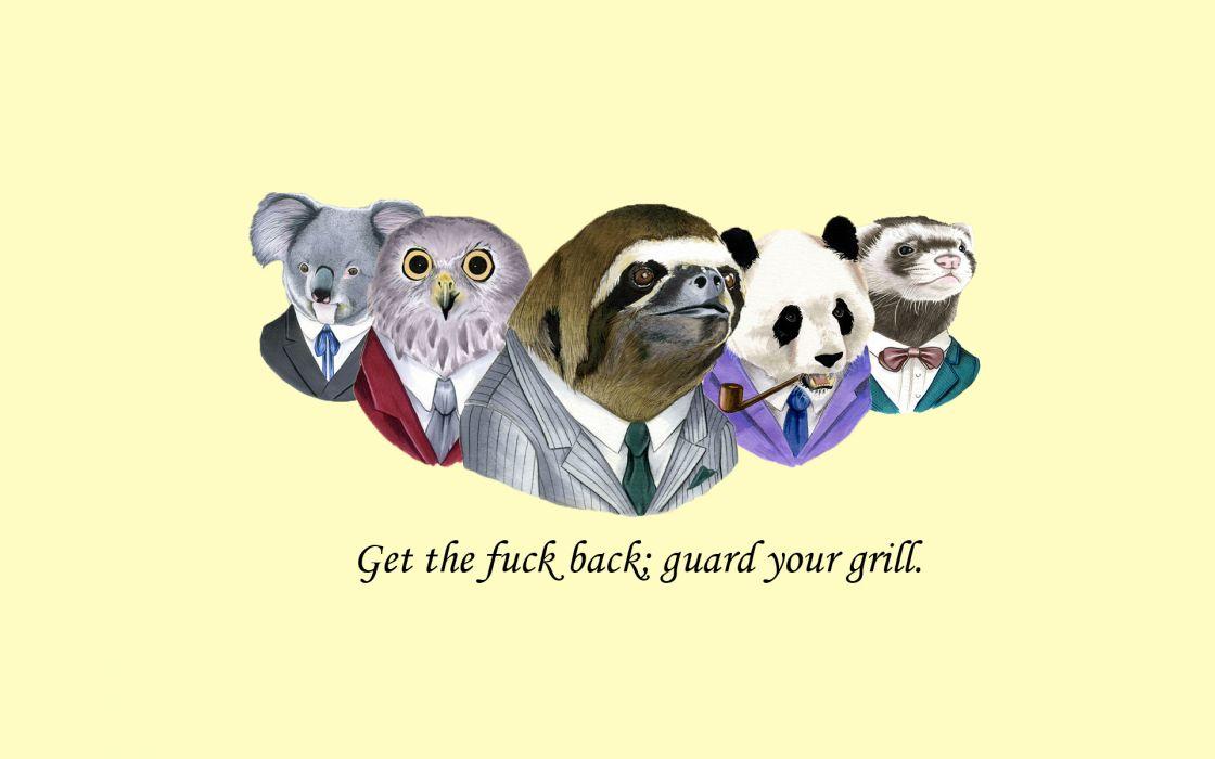 Sloth Suit WTF Fuck Owl Koala Panda Weasel Wallpaper
