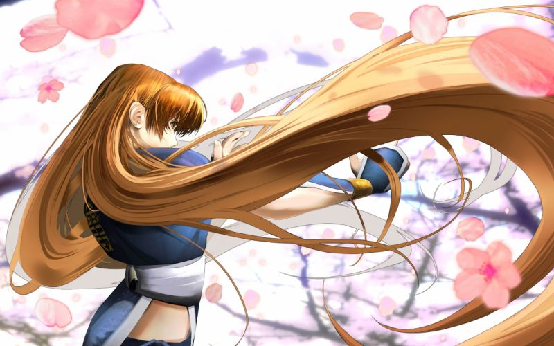 brown hair dead or alive flowers kasumi long hair tagme (artist) wallpaper