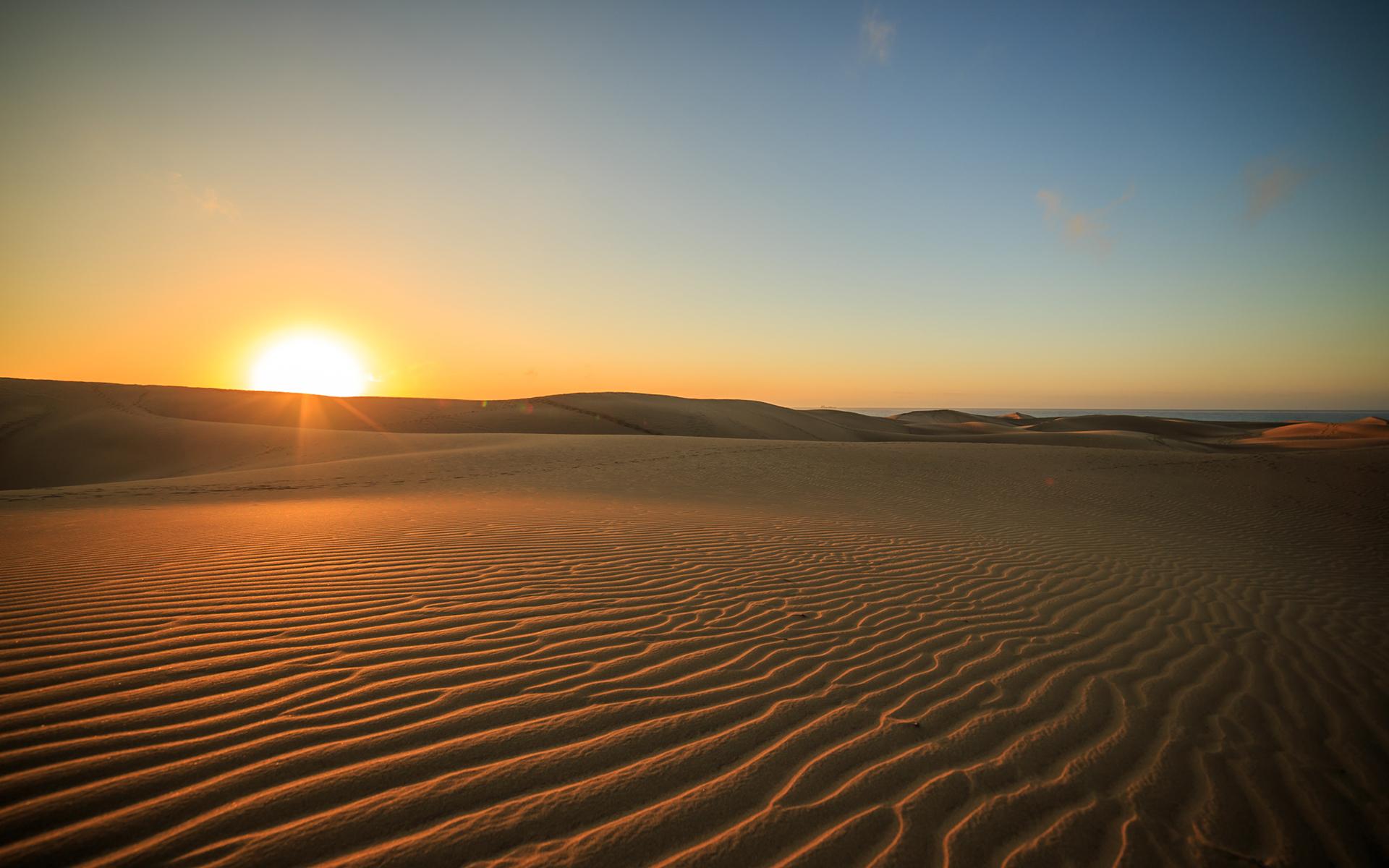 Desert Sunset Sunlight wallpaper | 1920x1200 | 74617 ...