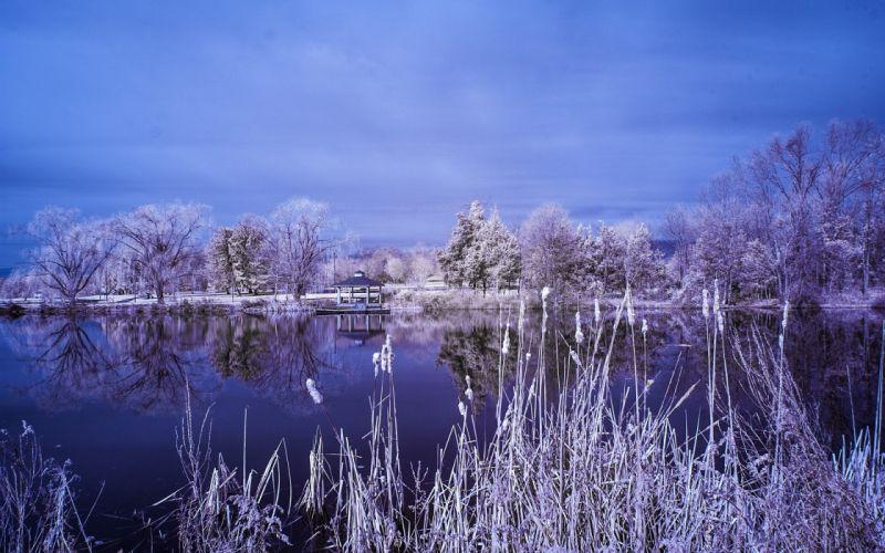 lake garden trees frost landscape winter reflection wallpaper