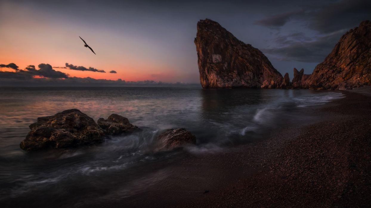 landscape Crimea the sea rocks beach sunset bird wallpaper