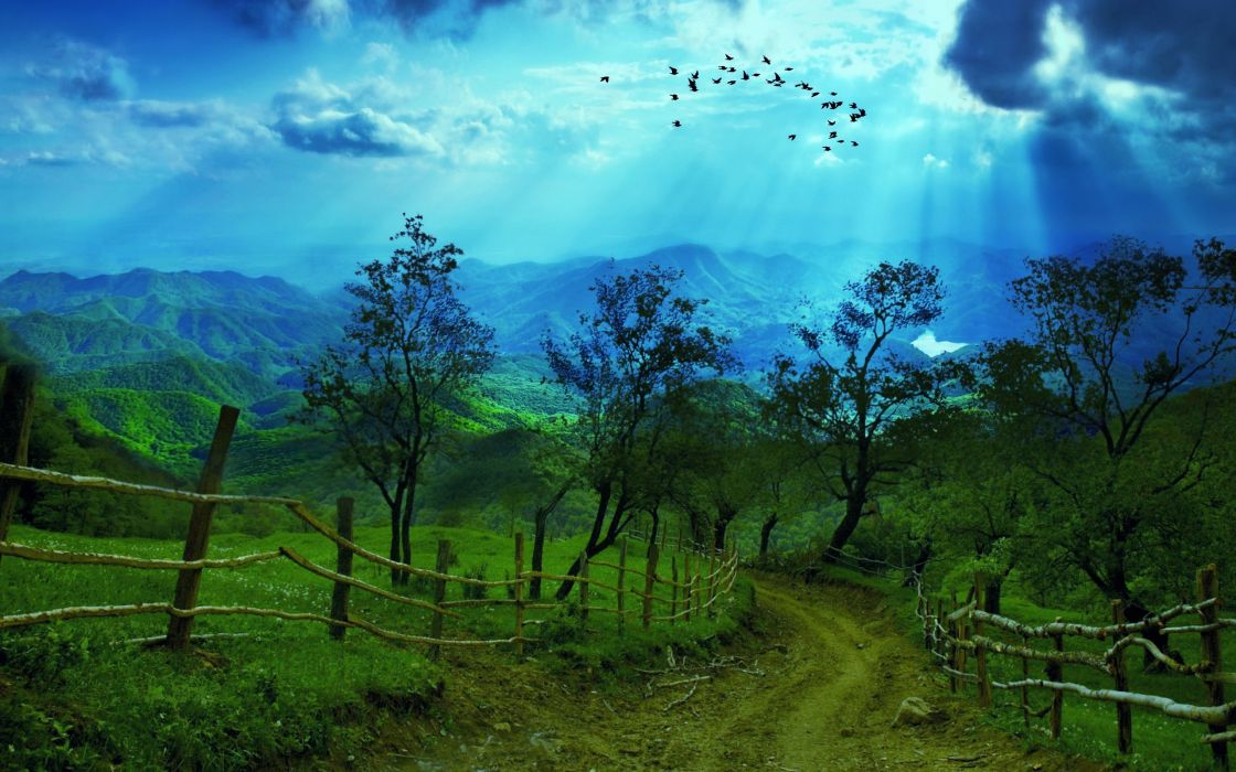 mountain road trees rays sky birds landscapes wallpaper