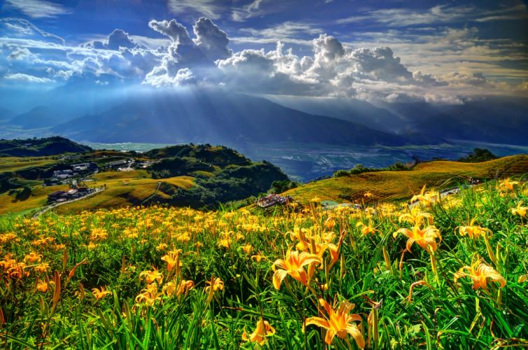 mountains slope flowers lilies the village the clouds wallpaper