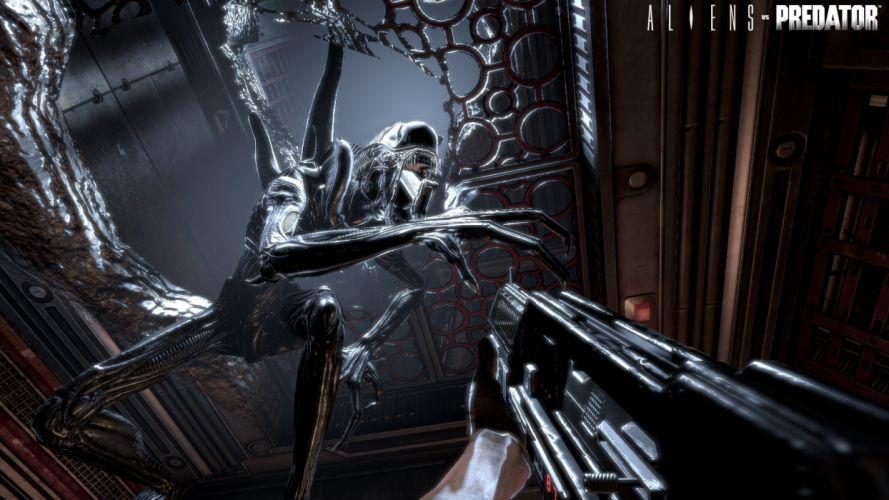 Aliens vs_ Predator Games sci-fi alien weapons w wallpaper
