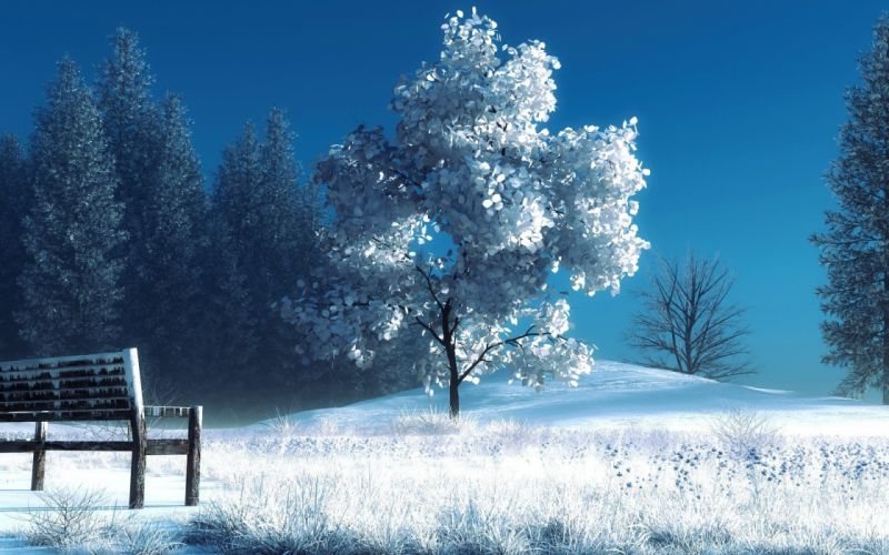 landscapes winter snow trees bench wallpaper