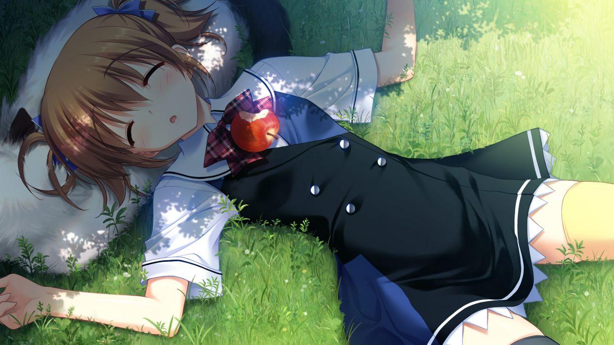 animal apple brown hair dog fumio game cg grass grisaia no kajitsu irisu makina sleeping wallpaper